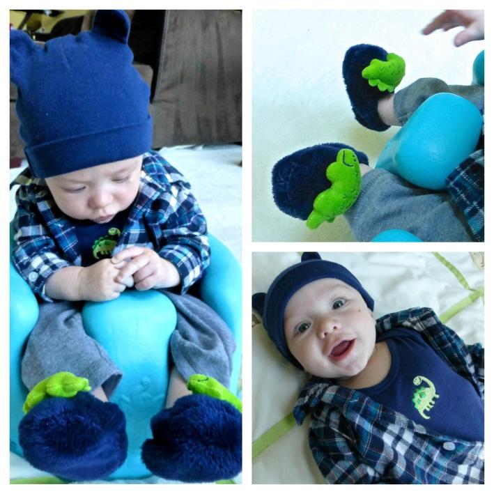 Dino Baby2