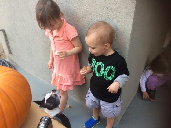 Pumpkin-Carving-Party